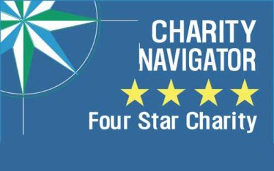 Tostan celebrates a 4-star Charity Navigator rating for the third year in a row